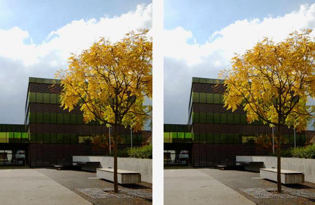 Fotograf Zürich, Fotograf gesucht, Bildbearbeitung im Photoshop